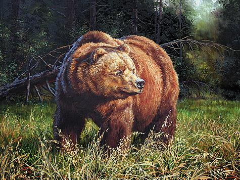 Т. И.Данчурова. Медведь наовсах (2007г.).