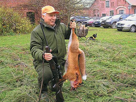 Журналист-оружейник, страстный охотник ихороший стрелок Римантас Михайлович Норейка взял эту лису первым выстрелом сдистанции около 150 метров. Браво! фото автора