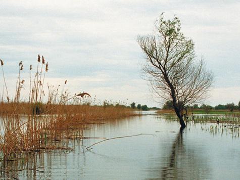 Фото: Владимир Сагадиев