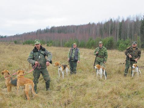 В Шитовском охотхозяйстве ВОО к услугам посетителей 5 гончих. Фото: Геннадий Кашуба.