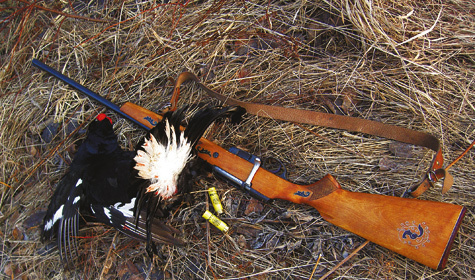 Каково мнение о 20-м калибре - Охота и рыбалка