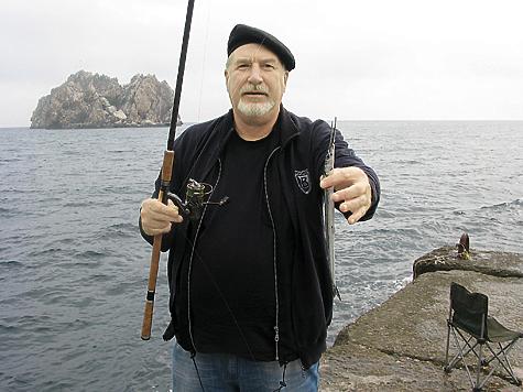 Сарган — частая добыча морских рыболовов.