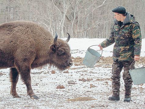 Кадры решают все: охотничье хозяйство невозможно без квалифицированных специалистов