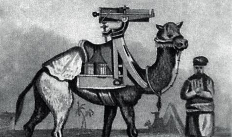 Многостволка с вращающимся блоком стволов  из XIX ввека на «корабле пустыни».