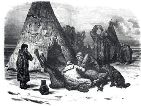 Для добычи мяса северного оленя применялись ружья и луки, но много зверя брали в петли и самострелами.