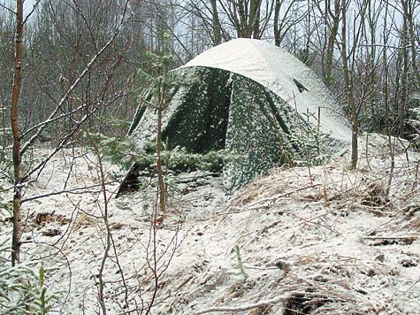 Скачать Игру Выживание В Лесу Зимой img-1