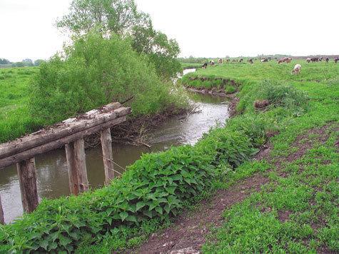 Хопёр вблизи от истоков Фото: А. Брежнева