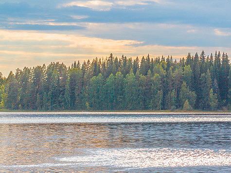 Фото Антона Журавкова