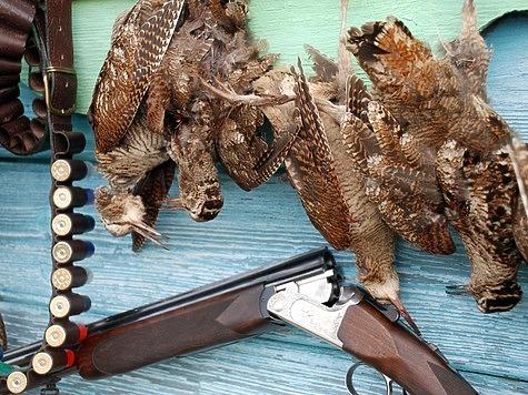 Сроки весенней охоты 2107. Фото: Семина Михаила