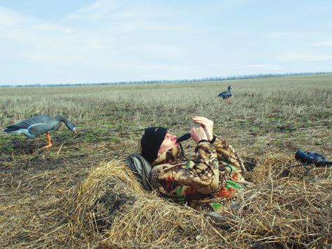 охотник скачать торрент - фото 8