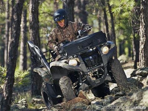 (Крым, квадроцикл для охоты обзор кролик означает верность