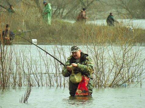 рыбалка при выживании