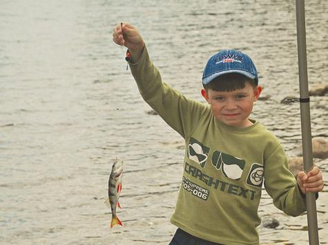 Добыча юного рыболова потребовала труда и настойчивости.