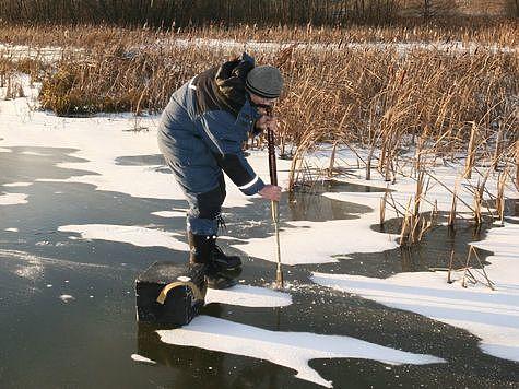 Лед на два удара пешни. Фото: Андрей Яншевский.