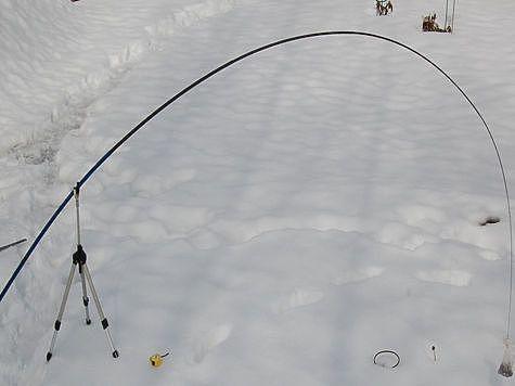 Классическая кривая изгиба 5-ти метрового удилища. Фото Андрея Яншевского