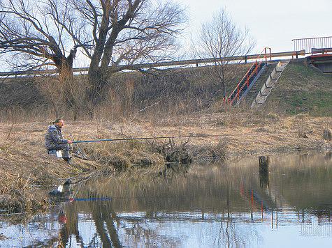 Рыболовные новости с водоемов Подмосковья