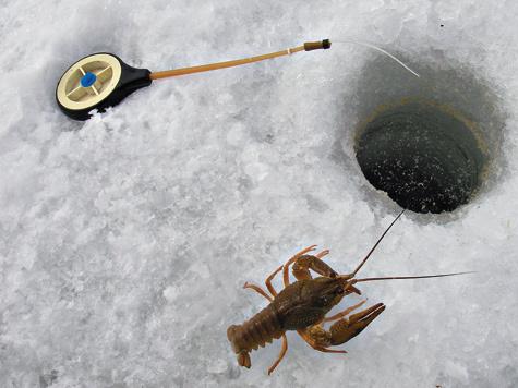 Если долго неклюет, тоне стоит ждать коротким зимним днем, «когда рак свистнет»,— лучше отправиться искать рыбацкую удачу сглубины намелководье, или наоборот.