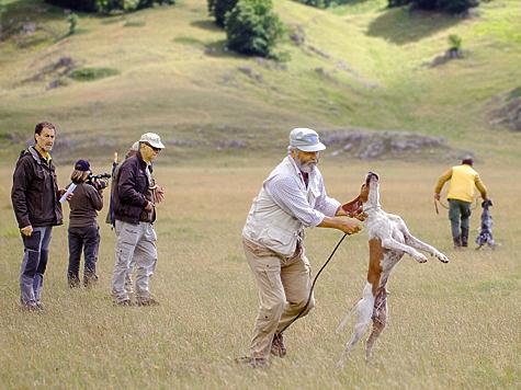 Состязание — это охотничий азарт собаки и соревновательный — ее владельца.