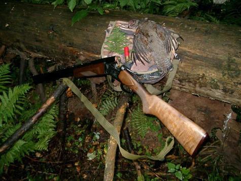 Сентябрь, отличное время для охоты на рябчика. Фото: Сёмина Михаила