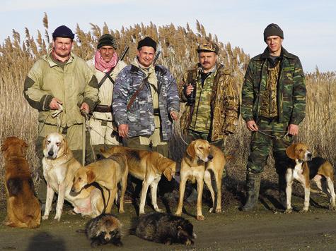 Как правило, добыть енотовидную собаку не составляет особого труда — ее добывают во время охоты на других пушных зверей  или охоты с гончими на лисицу и зайца.