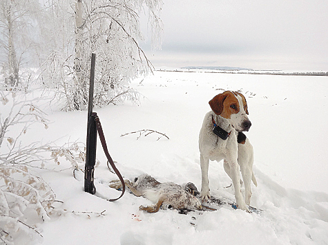 Фото Сергея КУДИНОВА