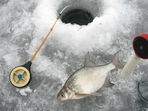 Какие мормышки для чего нужны? Часть 1 - Рыбалка - Охотники.ру