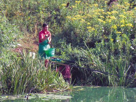 рыбалка охота прикормка для леща