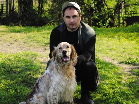 Английский сеттер Дик— первый вринге средней возрастной группы, вл.Х.В.Квициния. Фото автора