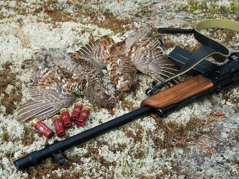 Переделки из военного оружия, место ли им на охоте? Фото: fotolia.com