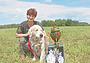 Участие ретриверов во Всероссийских выставках охотничьих собак