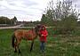 Использование лошади на охоте