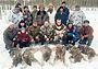 Идет борьба с волками в Калужской области