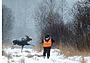 Тверской Конец: загадочное место для лосиной охоты