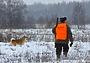Взгляд ученого на современную историю охотничьего хозяйства
