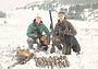 Зимовка вальдшнепа в горах Крыма