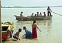 На рыбных берегах Ганга