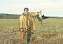 Охота на гуся: работа манком