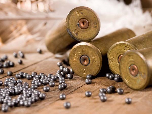 Охотничье ружье в домашних условиях