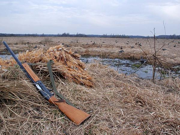 Запрет весенней охоты - начало положено!