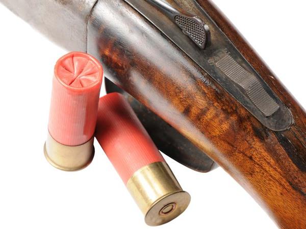 наборы правила хранения охотничьего ружья и патронов поезд знаменка новоалексеевка