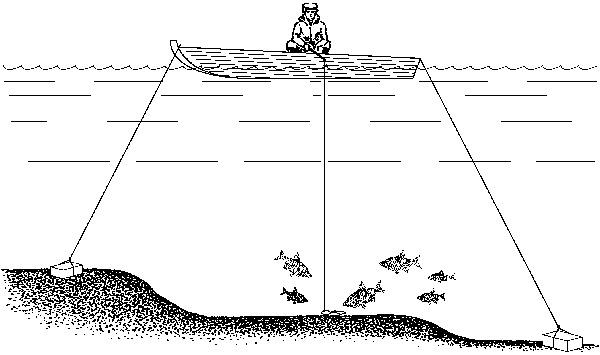 рыболовная снасть которую ставят поперек течения peки