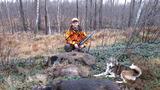 Удачный выстрел на загонной охоте