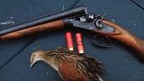 Перед выстрелом - отпусти птицу подальше